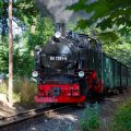 Eine Fahrt mit der nostalgischen Taurachbahn